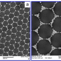 nanotechweb.org: Ring-like assembly of Gold nanoparticles for enhanced SERS detection