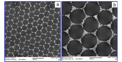 DCN Corp® - Overview: (a). and magnified, and (b) SEM images of 282 nm Silica colloidal crystals decorated with 25 nm Gold nanoparticles (AuNP)