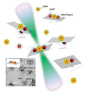 DCN Corp® - The National Institute of Standards and Technology (NIST) team explored the reaction of quantum dots and gold nanoparticles (AuNP) placed in different configurations on small rectangular constructs made of self-assembled DNA (see inset for photograph). Laser light (green) allowed the team to explore changes in the fluorescent lifetime of the quantum dots when close to AuNPs of different sizes. Credit - NIST