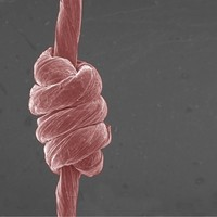 Penn State: Super-stretchable yarn is made of Graphene